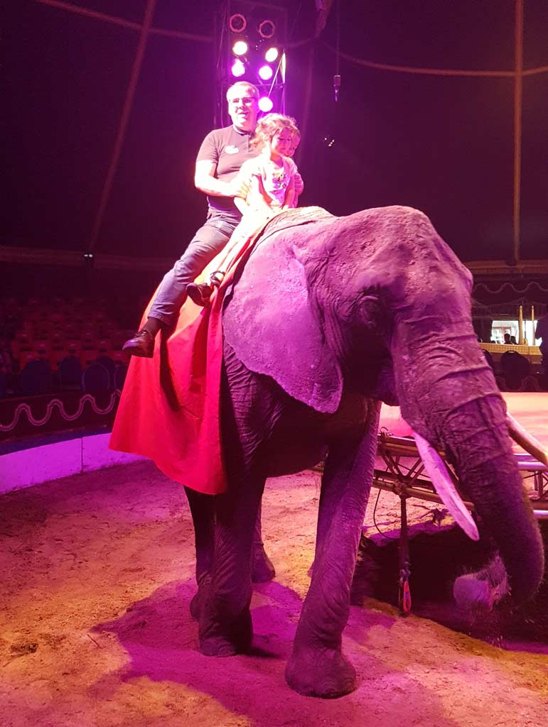 Thomas Greve zum ersten Mal als Reiter auf einer Elefantendame